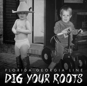 FGL Dig Your Roots